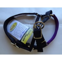 This-End-Up Halter For Alpacas