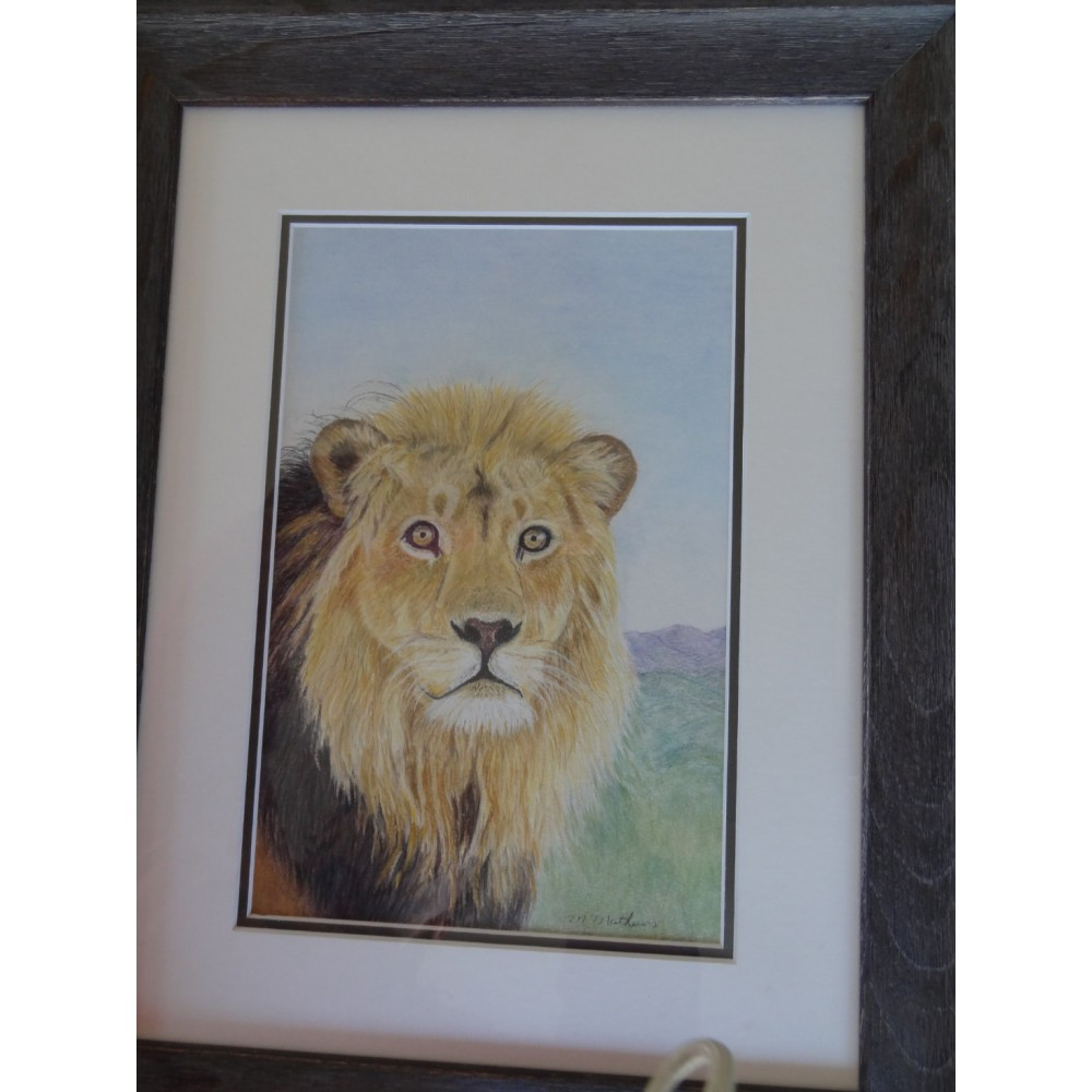 Black Maned Lion (Pastel Pencil)